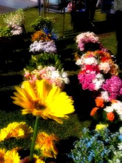 image-20111010222415.png
