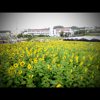 image-20130227153454.png